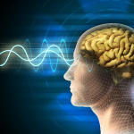 Brain may flush out toxins during sleep, study says