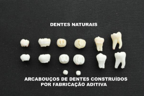 Faithful reproduction of human teeth by means of additive fabrication process, a technique that uses computer models