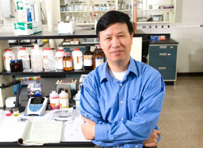 Professor Ning Wang, co-lder do estudo