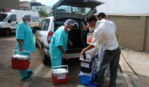 Minas Gerais was 1097 procedures performed from January to June