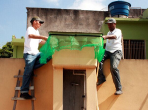Health officials install a safety net in the water tank to fight dengue in Mato Grosso