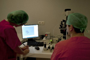 Researchers using the tool UPV-Lafe