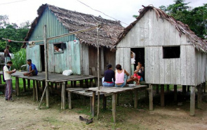 Bordering the city of Eirunepé (AM): of 423,000 registered cases of malaria reported in the country on average, 99.7% occurred in the Amazon region