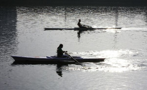 Rowing works the pectoral region, contributing to muscle mass and increased aerobic capacity.