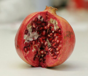 Discovery of pomegranate as a weapon against methicillin-resistant Staphylococcus aureus