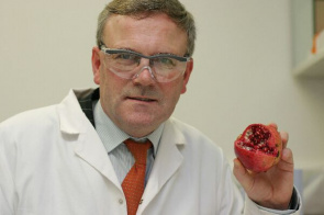 Professor Declan Naughton who has found that pomegranate peel can be transformed into an ointment for treating methicillin-resistant Staphylococcus aureus (MRSA) and other common hospital infections