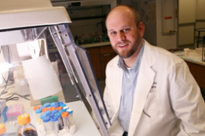 Researchers led by Rolf Brekken in mice showed that pancreatic cancer cells regress dramatically when treated with chemotherapy